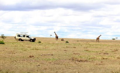 6 day serengeti safari