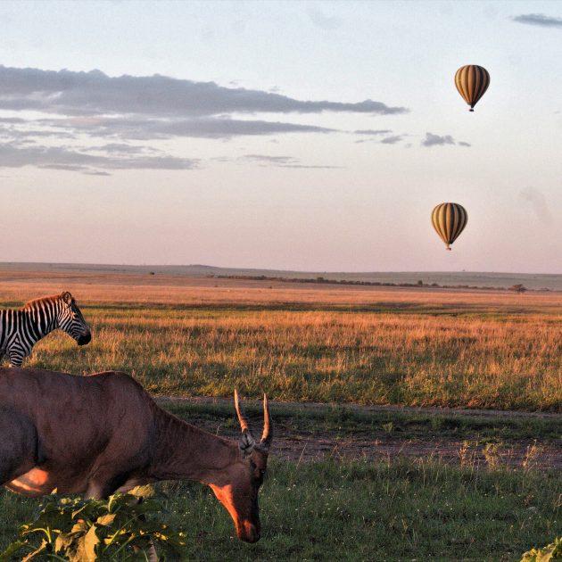 4 Day Serengeti and Ngorongro safari